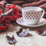 Фото калинового чая 2