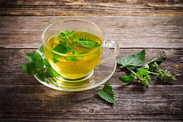 Чай с мелиссой для женщин