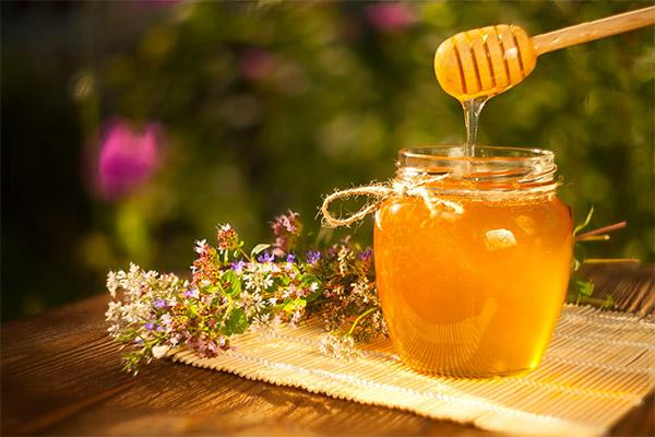 Чем полезен майский мед