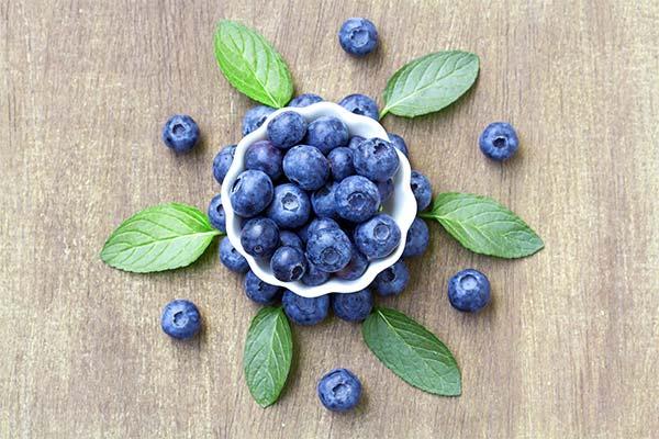 Что можно приготовить из ягод черники