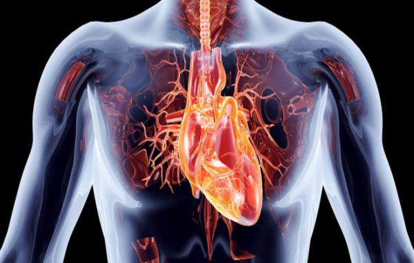 infarkt miokarda perenesennyy na nogah