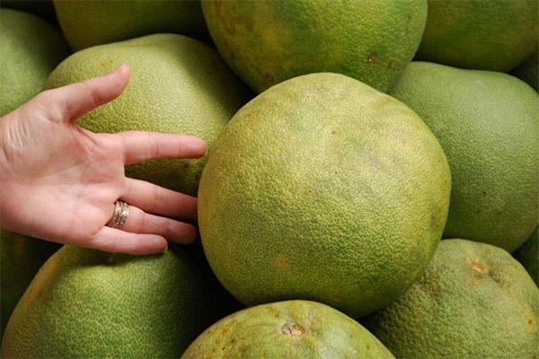 Как выбрать спелый помело в магазине