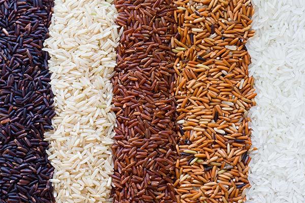 Какой рис полезнее при ГВ