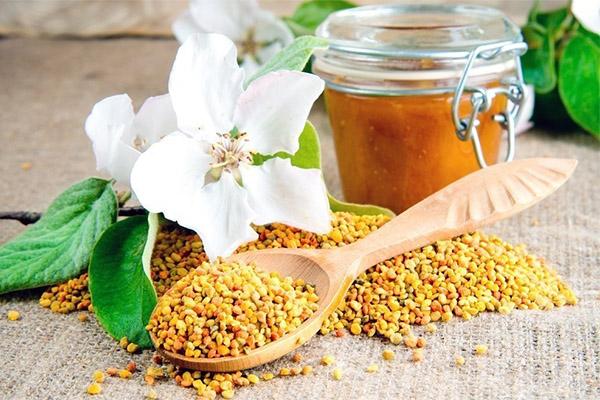Лечебные свойства пчелиной пыльцы