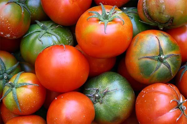 Могут ли помидоры навредить будущей маме