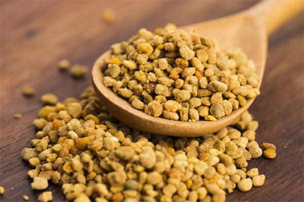 Полезные свойства пчелиной пыльцы