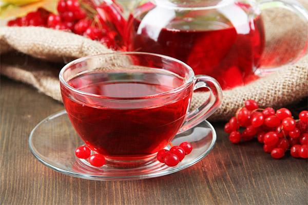 Польза и вред калинового чая