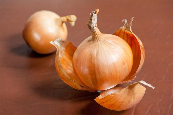 Польза и вред луковой шелухи