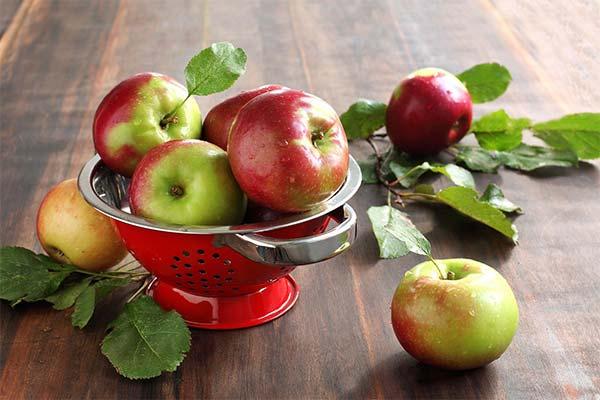 Польза яблок при грудном вскармливании