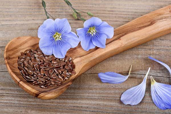 Польза семян льна при беременности