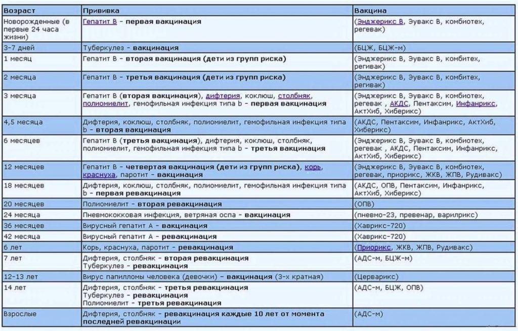 Календарь (график) прививок для детей