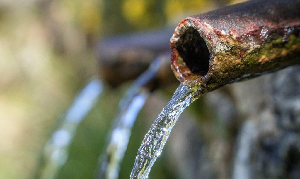 Живая и мертвая вода: конструкция прибора, использование и обзор популярных моделей